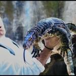 Bali reptiles