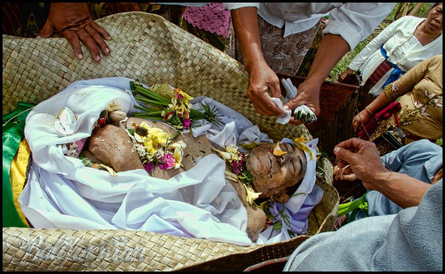 Bali Healers cleansing ritual