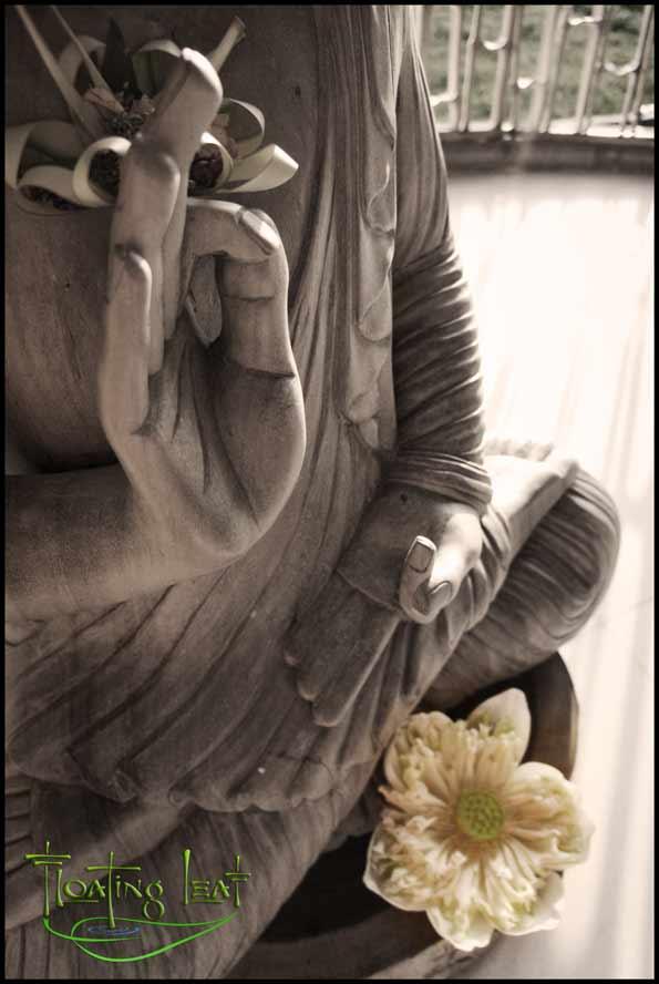 Buddha mudra and lotus