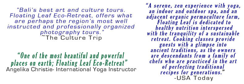 eco retreat testimonials