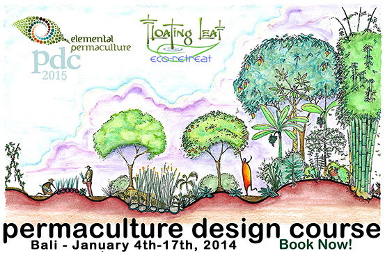 Bali Permaculture Design Course and Retreat