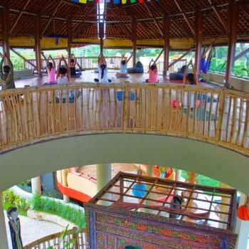 Yoga Sanctuary and Lotus Lounge