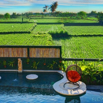 The Healing Pool and surrounding ricefields