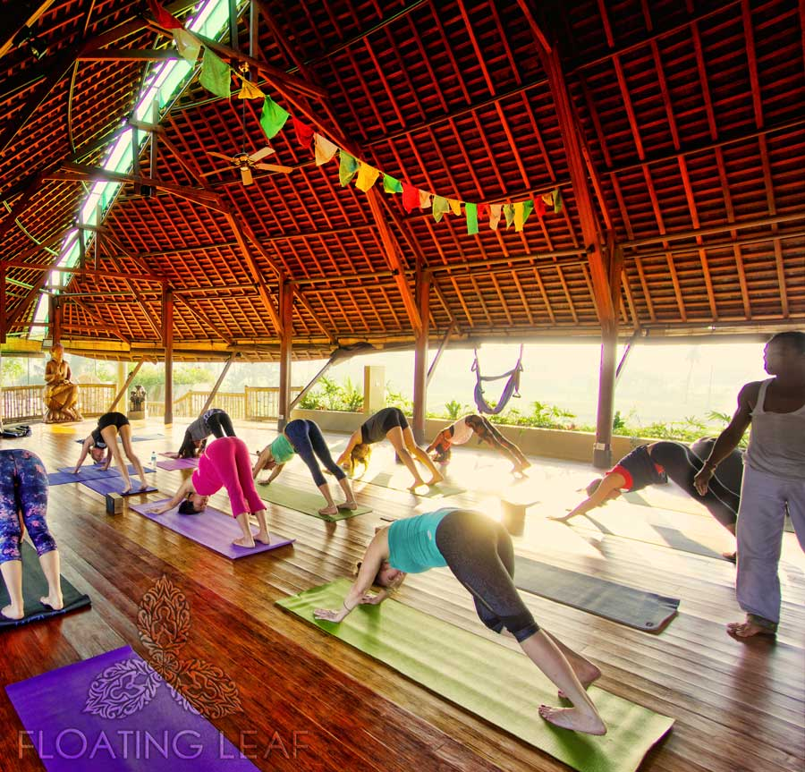 Lauren Rudick Bali Yoga retreat