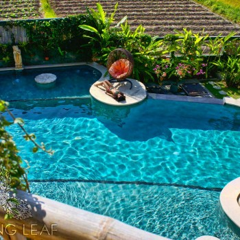 The Healing Pool at Floating Leaf Eco-Luxury Retreat