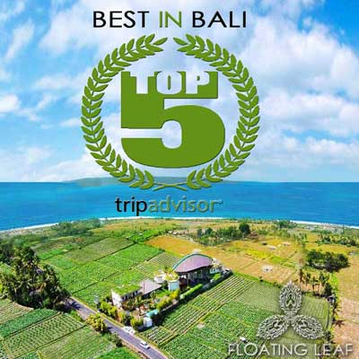 Best hotel in bali floating leaf ranked in top 5 for Great hotels in bali