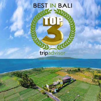 Best retreat in Bali