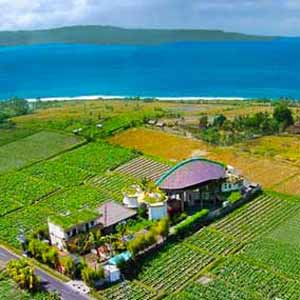Bali retreat itinerary