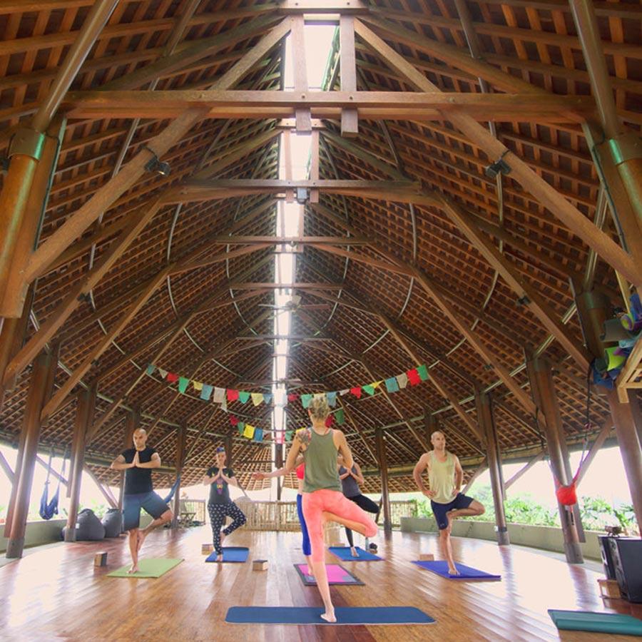 Community Appreciation Yoga Classes - Floating Leaf Eco ...
