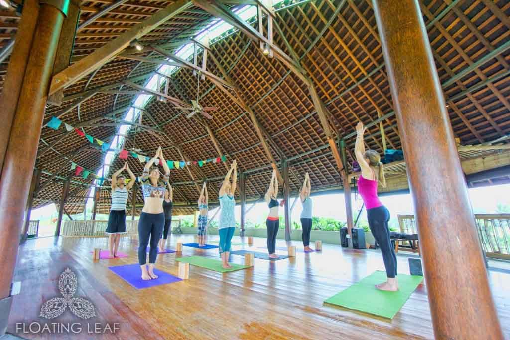 Luxury 14 Days Yoga Alliance Ashtanga Vinyasa Ryt 200 Hour Bali Floating Leaf